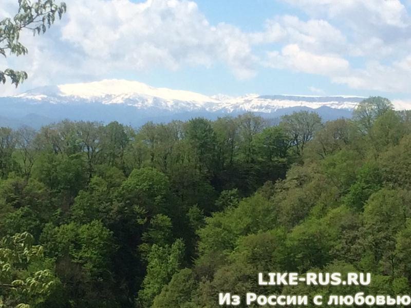 Вид на Кавказский природный заповедник